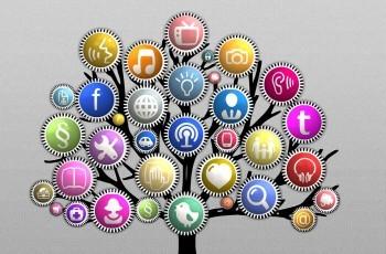 importância do gerenciamento de redes sociais