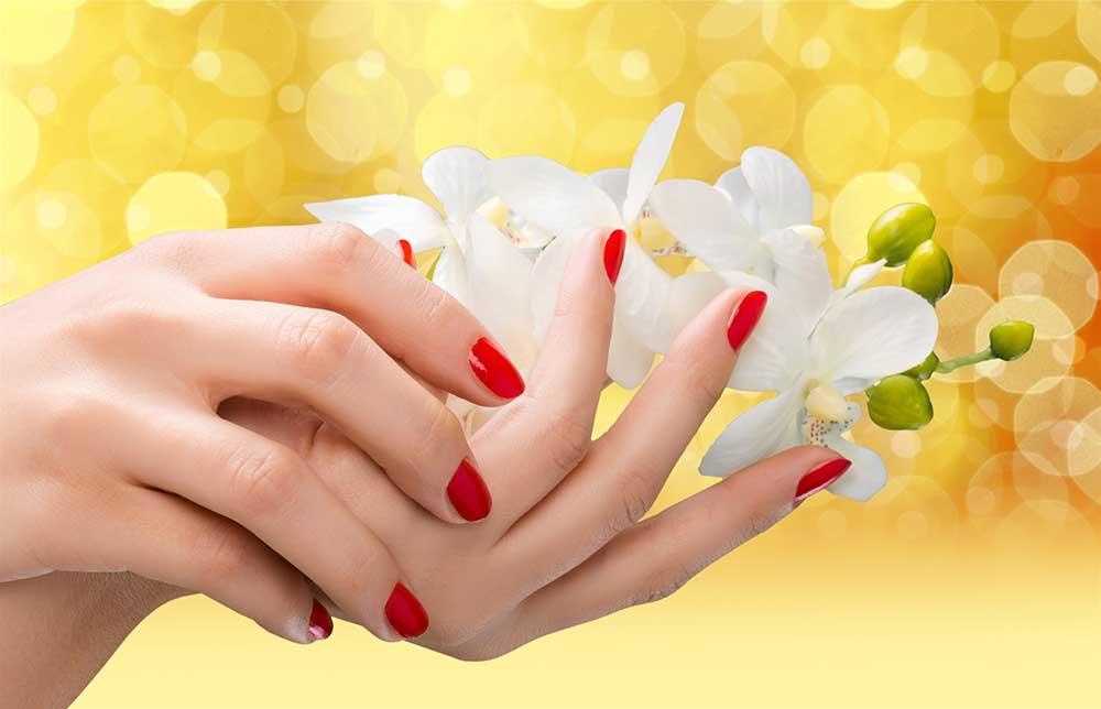 logo-para-manicure-02