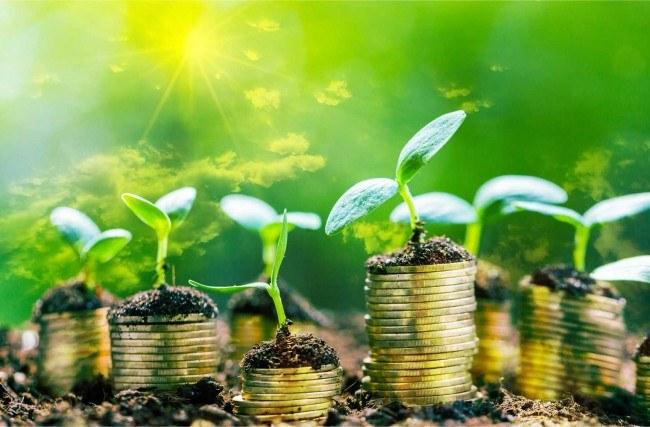 Como ganhar dinheiro com criação de blog?